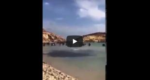 فيديو… وصول عدد من المهاجرين إلى السواحل الإسبانية